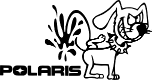 Funny Vinyl Decal Sticker POLARIS HQ 5x7 ANY COLOR!